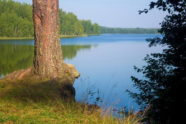 Валдай озеро ужин частные объявления работа в уральске свежие вакансии кладовщик